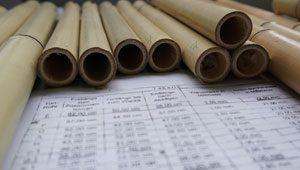 chinesischer bambus für den Panflötenbau
