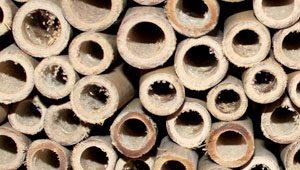 Panflöten Bambus
